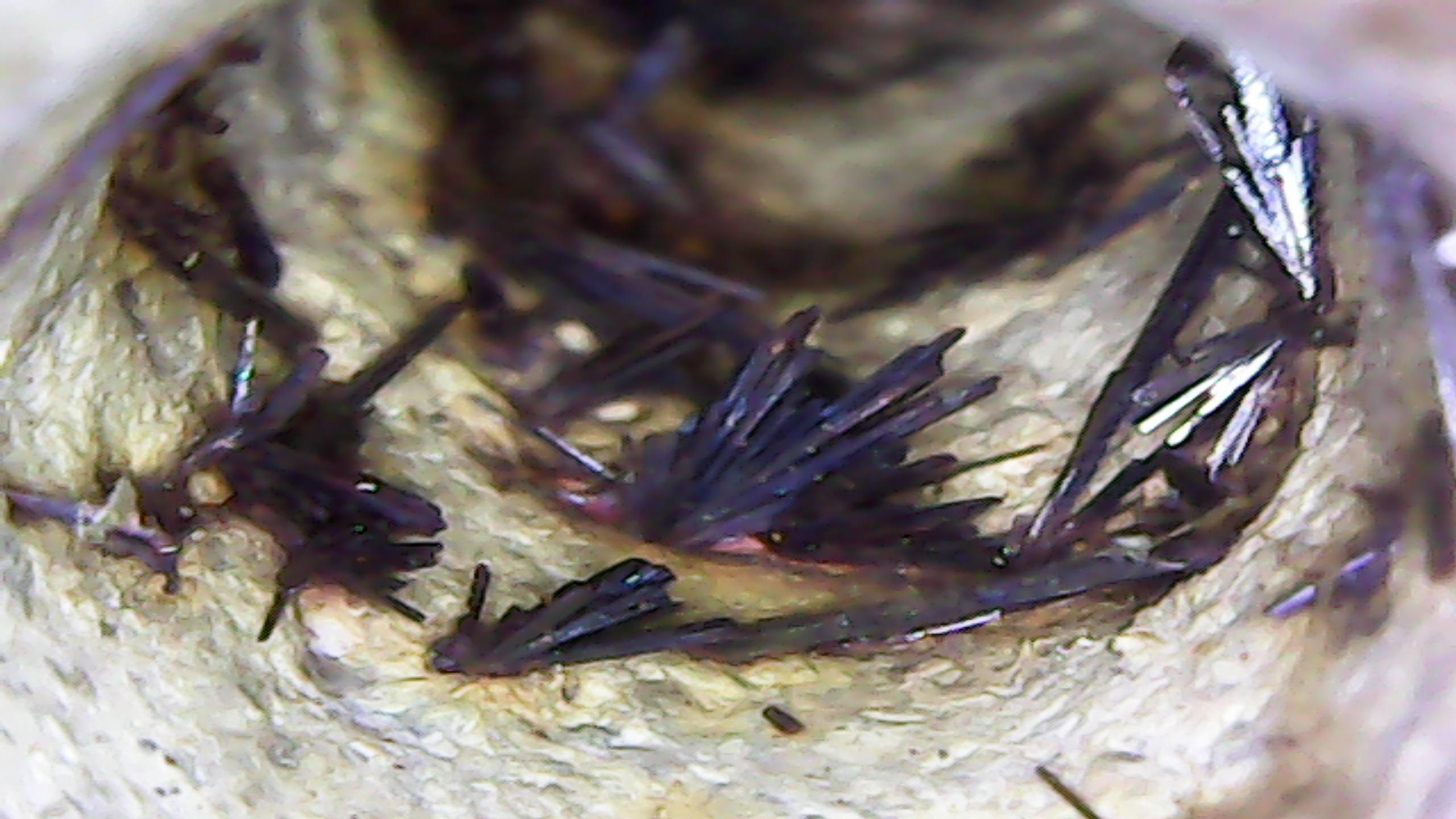Hongshan bird needle hematite crystal 1