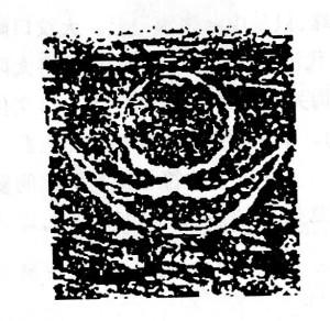 img053 (2)